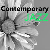 Contemporary Jazz - Hold Music for Lift, Waiting Room, Airport and Elevator Songs, Slow Jazz & Bossanova Songs by Bossa Nova Guitar Smooth Jazz Piano Club