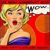 Die Mega Sommerhit Mixe, Maxi Party und Schlager Medleys (Wow) de Schmitti
