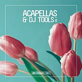 Enormous Tunes - Acapellas & DJ Tools, Vol. 1 von Various Artists