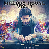 Melody House, Vol. 1 de Various Artists