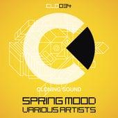 Spring Mood de Various Artists