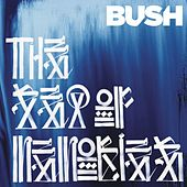 The Sea of Memories de Bush