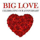 Big Love: Celebrating Our Anniversary by Various Artists