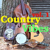 Country Vibes, vol. 1 by Various Artists