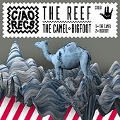 The Camel / Bigfoot by Reef