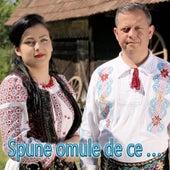 Spune Omule De Ce ... by Various Artists