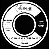 Do What You Came to Do by Orgone