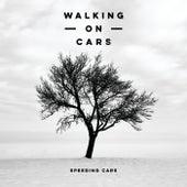 Speeding Cars von Walking On Cars
