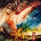 Down From The Sky von Trivium