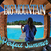 Perfect Summer de Big Mountain