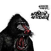 Baboon Strength de Charlie Hunter