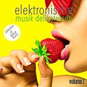 Elektronische Musik Delikatessen, Vol. 1 - Selection of Dance Music di Various Artists