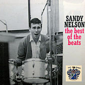 The Best of the Beats by Sandy Nelson
