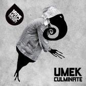 Culminate by Umek