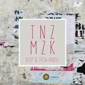 Tanzmuzik de Various Artists