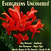 Evergreens Uncovered de Various Artists