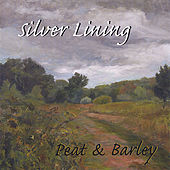 Silver Lining by Peat