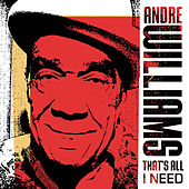 That's All I Need de Andre Williams