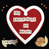 The Excitement of Maybe by Exene Cervenka