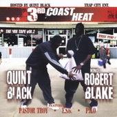 3rd Coast Heat : Vol. 2 de Various Artists