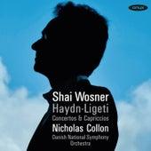 Haydn & Ligeti: Concertos & Capriccios de Shai Wosner