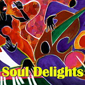 Soul Delights by Various Artists
