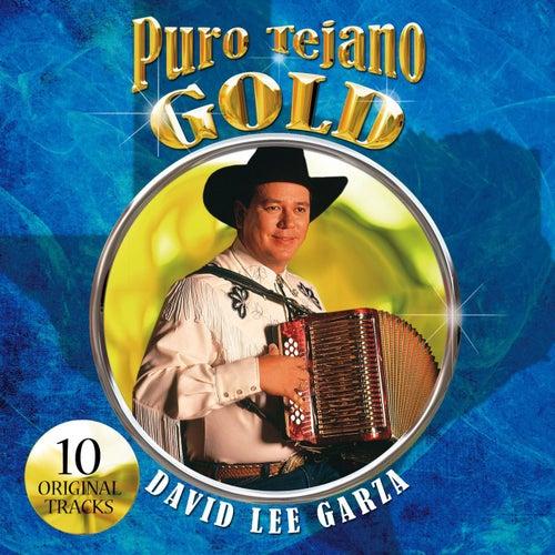 Puro Tejano Gold de David Lee Garza