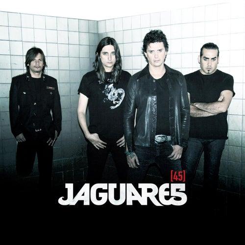 45 by Jaguares