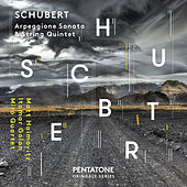 Schubert: Arpeggione Sonata in A Minor, D. 821 (Arr. for Cello & Piano) & String Quintet in C Major, Op. 163, D. 956 by Various Artists