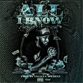 All I Know by Qbo