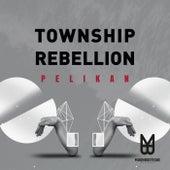 Pelikan von Township Rebellion