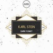 Dark Funky by Karl Stein
