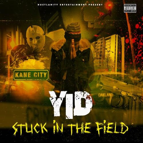 Stuck in the Field de Yid