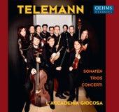Telemann: Sonatas, Trios & Concerti by Various Artists