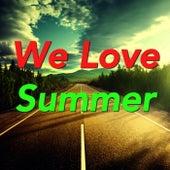 We Love Summer von Various Artists