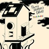 Stay Awake by Prince Rupert's Drops