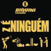 Zé Ninguém von Biquini Cavadão