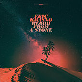 Blood from a Stone by Eric Krasno