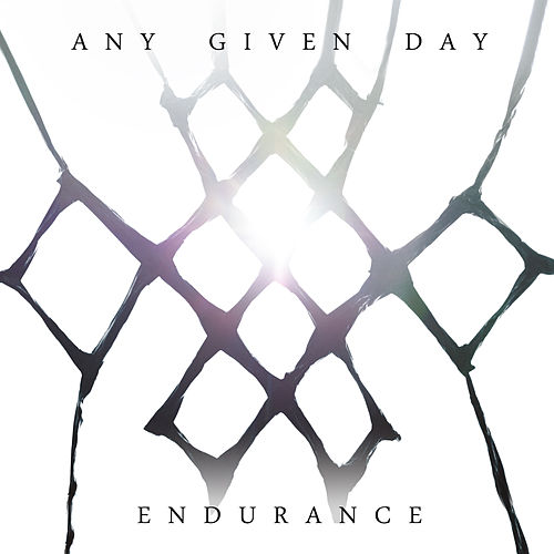 Endurance von Any Given Day