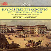 Haydn: Trumpet Concerto & Orchestral Favourites, Vol. XIII by John Wallace
