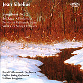 Sibelius: Orchestral Favourites, Vol. XXIII de Various Artists
