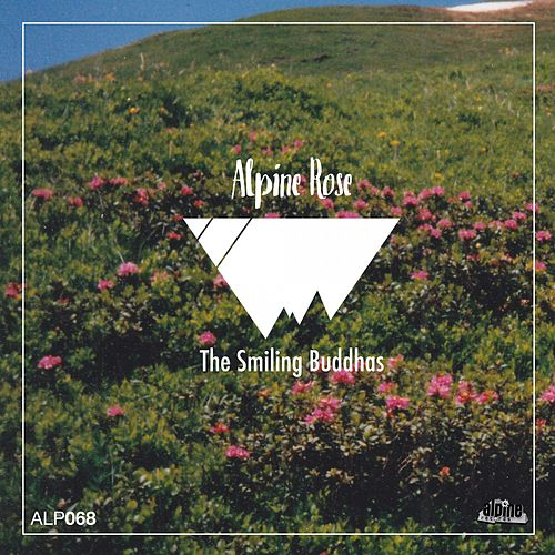 Alpine Rose by The Smiling Buddhas