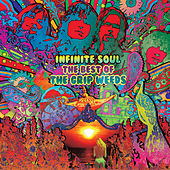 Infinite Soul: The Best of the Grip Weeds de The Grip Weeds