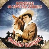 Homenaje al Jefe del Corrido de Chalino Sanchez
