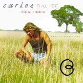Orígenes y Tambores by Carlos Baute