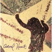 Astral Heart de K Michelle Dubois
