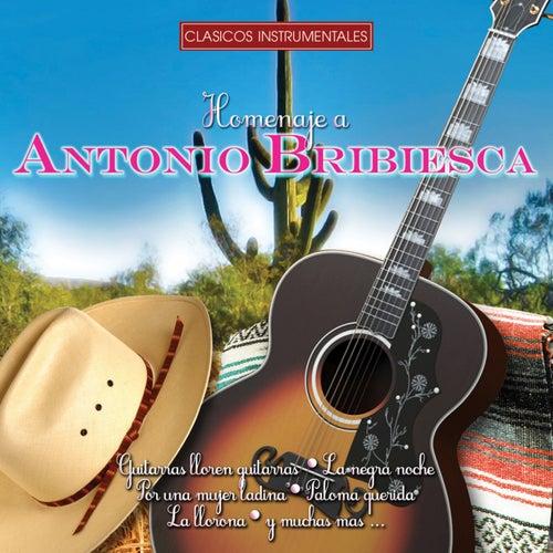 Homenaje (Clásicos Instrumentales) by Antonio Bribiesca