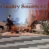 Country Sounds 4 U, Vol. 3 von Various