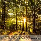 Ambient SoundScapes. Vol. 20 by Terry Oldfield