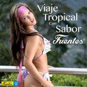 Viaje Tropical Con Sabor Fuentes by Various Artists